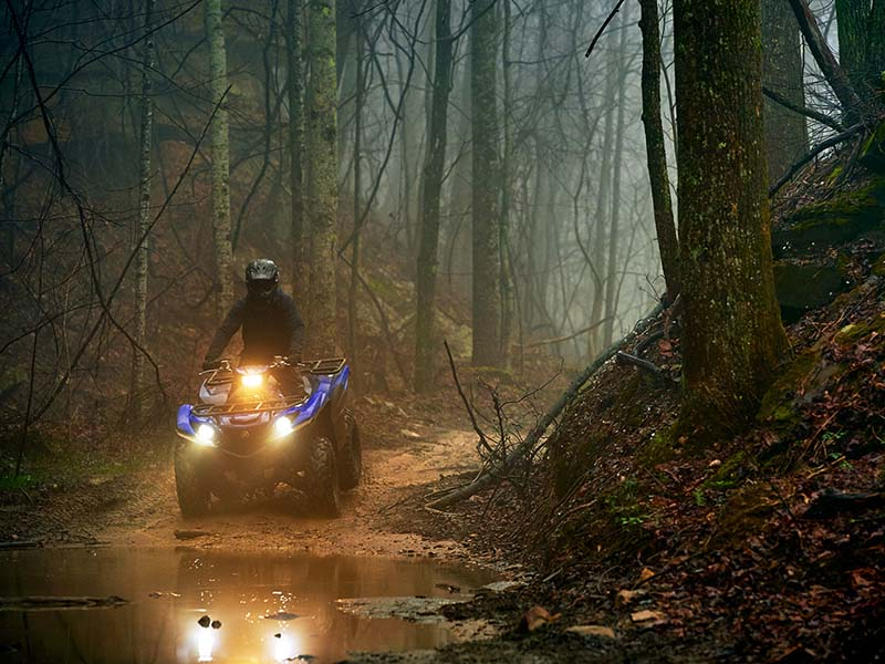 Yamaha Grizzly700 Gallery